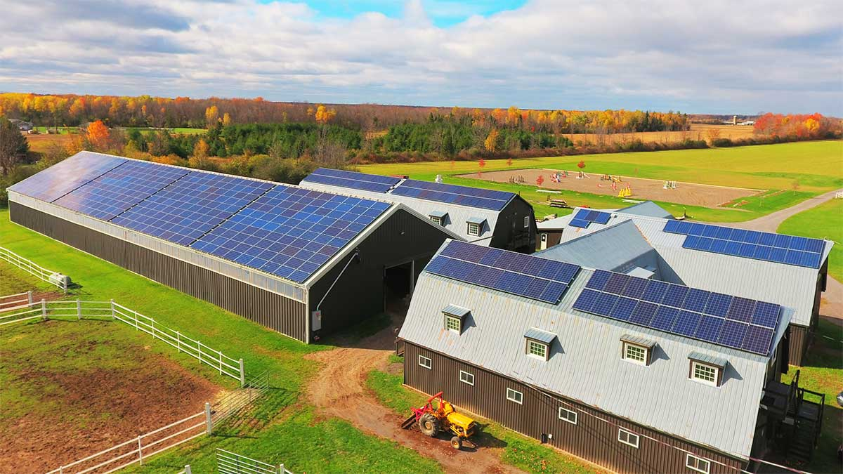 Agricultural - iSolara Solar Power - Juniper Farms 100 kW AC
